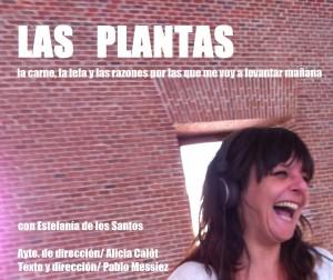 cartelPLANTAS-300x252
